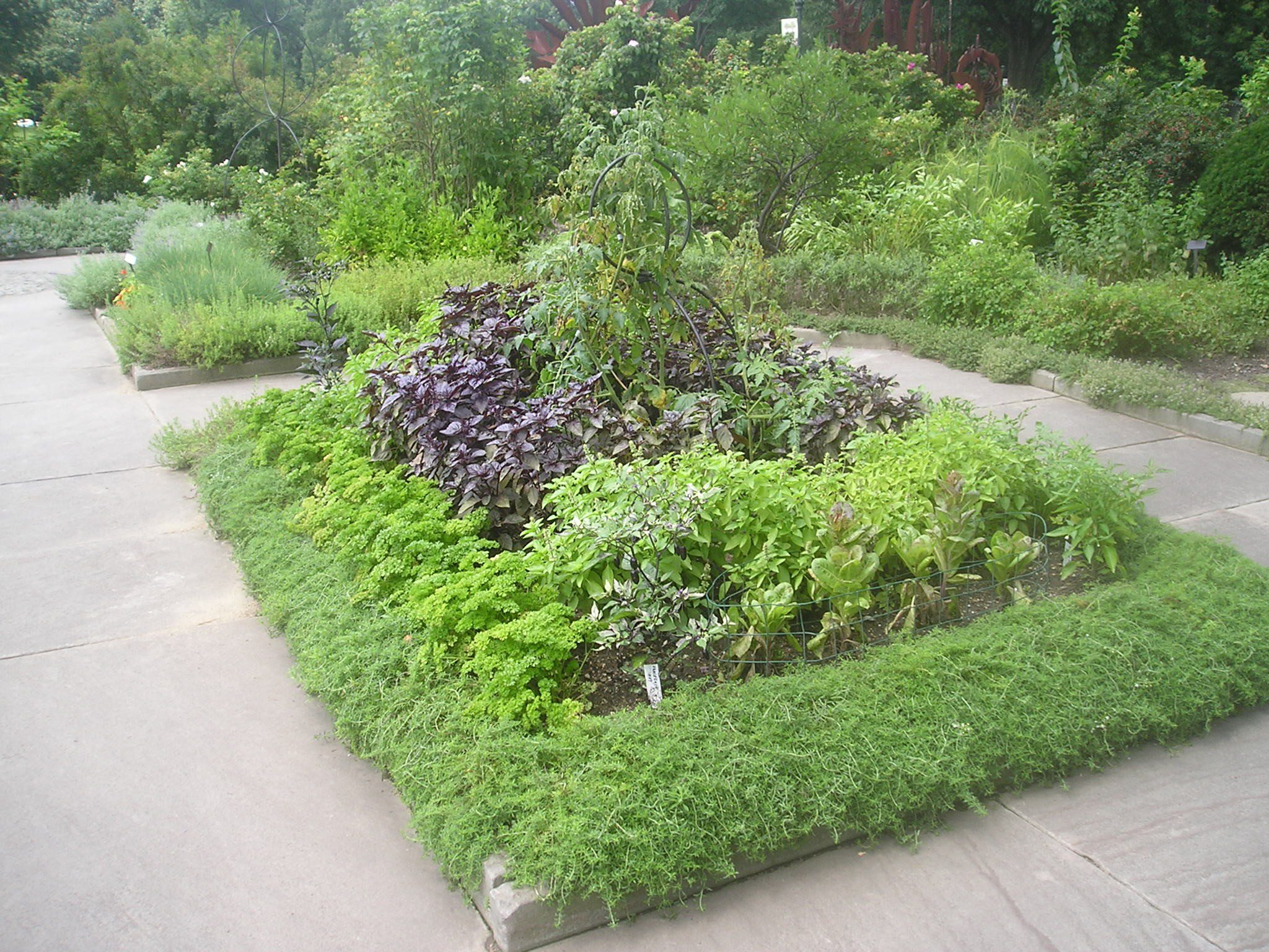 Garden Design Top Tips #7: Herbaceously good... - Earth ...