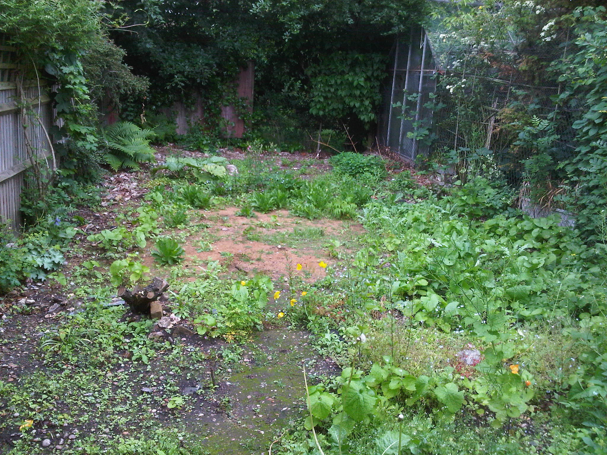 London garden design stanmore taking a different path for Different landscape design