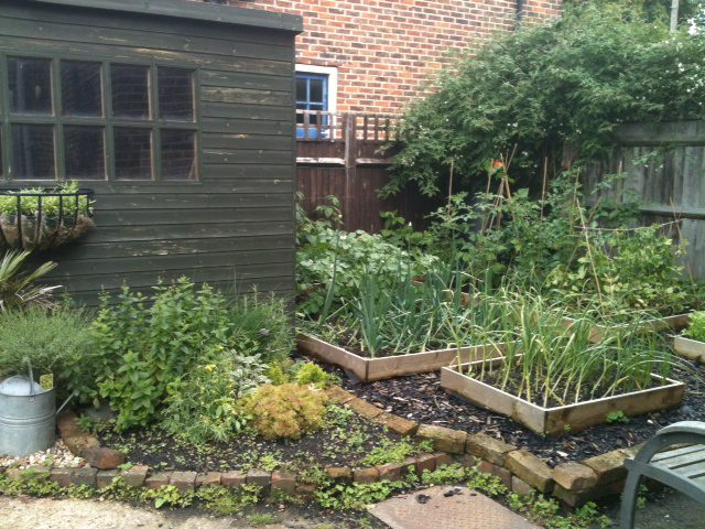 Garden design advice vegetable garden layout earth designs garden design and build - Vegetable garden ideas uk ...