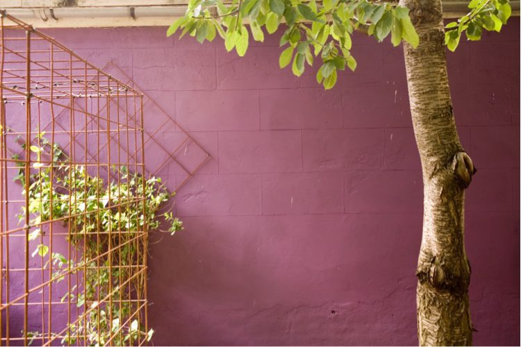 An unslightly wall looks great painted in a deep aubergine