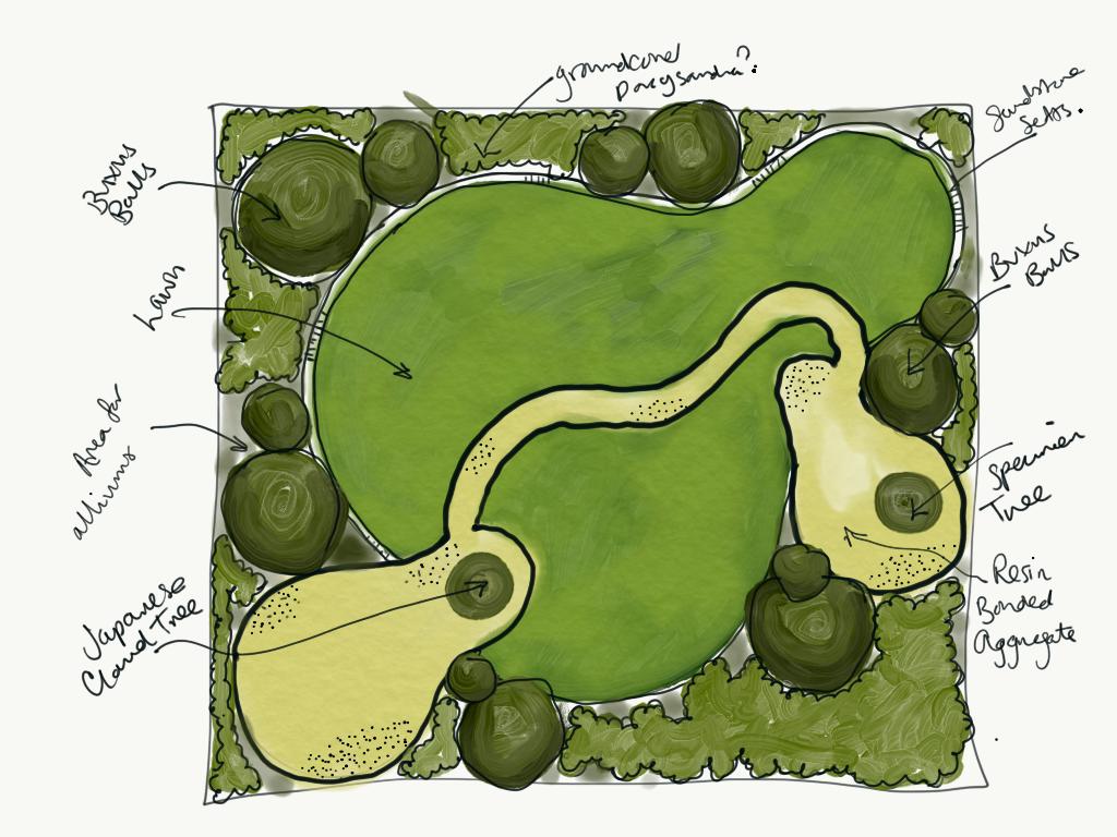 Modern garden design sketch
