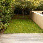Garden Design London Dulwich Before Shot 2