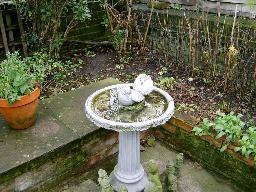 Leeds Garden Design Before Shot
