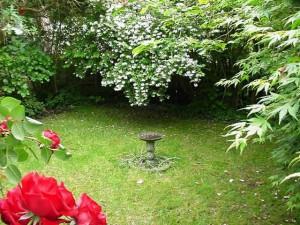 Garden Design Somerset Before Shot