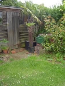 Garden Design North London Before Shot