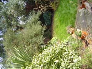 London Garden Design Before Shot 1