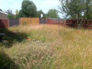 Norfolk Garden Design photo of garden