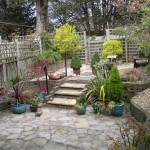 Garden photo for re-design