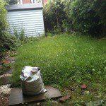 Before Garden Shot