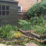 Vegetable Garden before