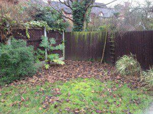 Essex Garden Design before photo