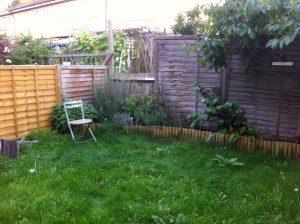 Garden design clinic Leigh-on-Sea