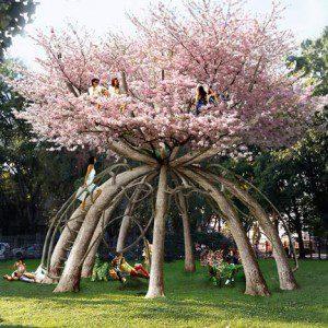 Family garden design in Essex