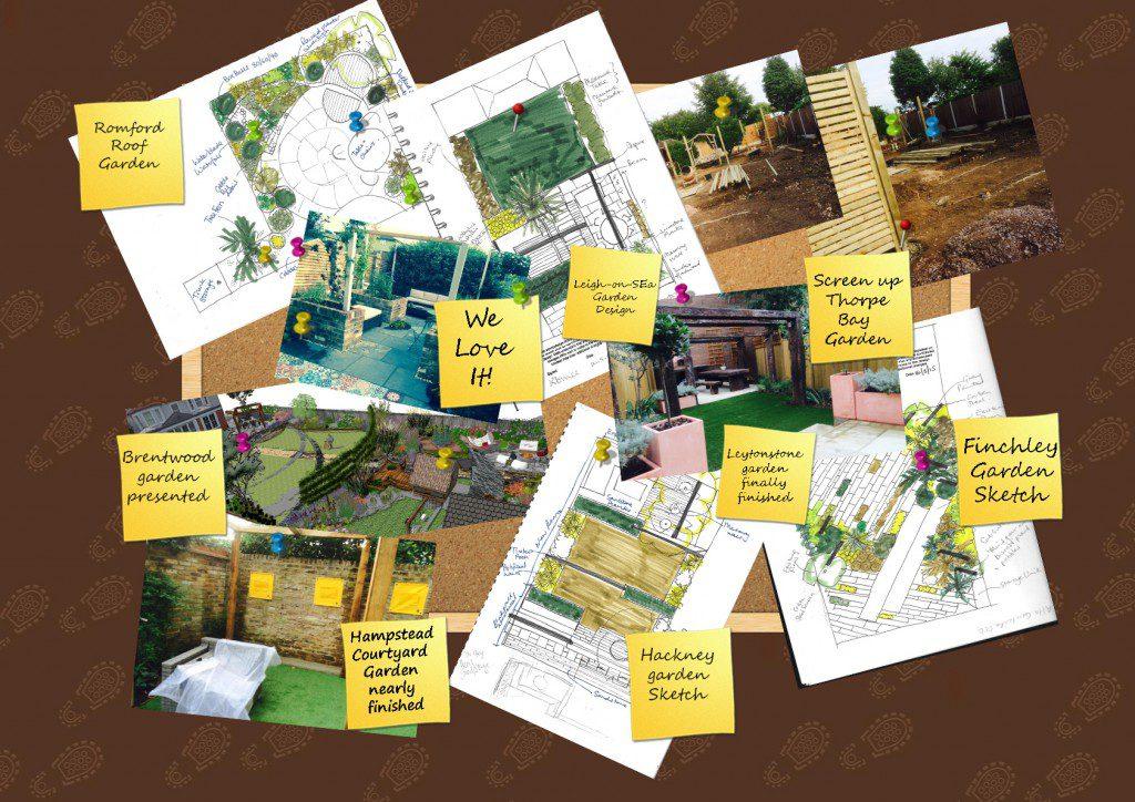 Essex Garden Design Diary WOTB wk34 2015