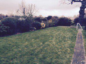 How the garden looked.