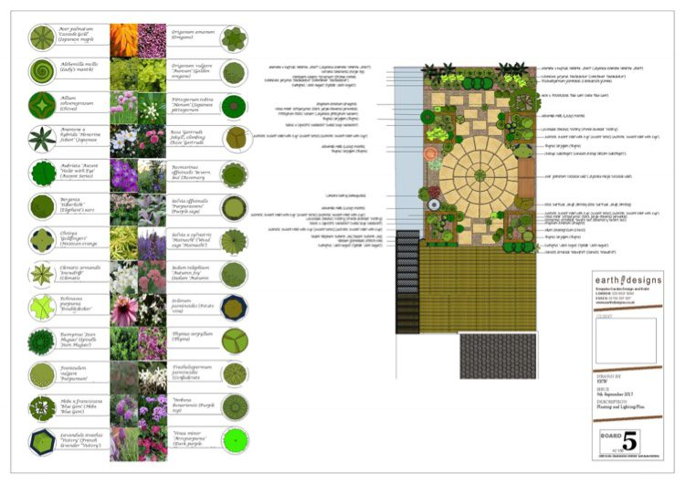 Cottage planting softens the garden