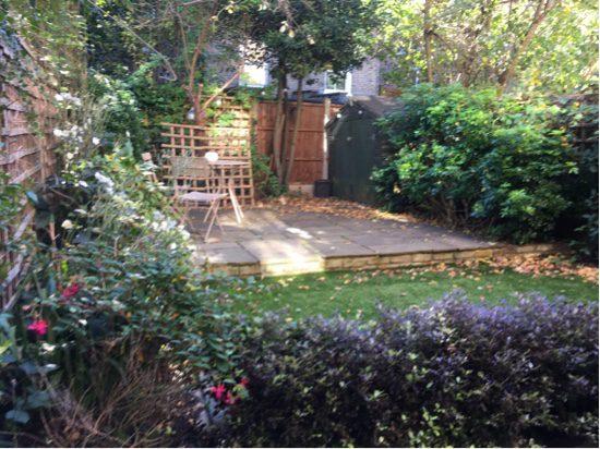 North London Garden designer needs to add excitement.