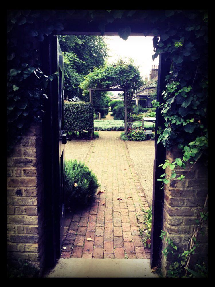 Our London Garden Designer mooches around the herb garden