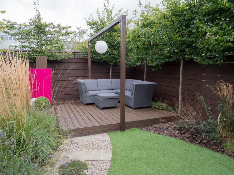 Pleached trees are a fantastic way or raising your boundary height