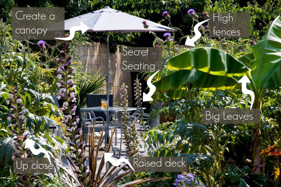 how to create the perfect jungle garden