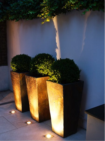 Accent lighting, such as eliminating pots helps to bring the features alive at night