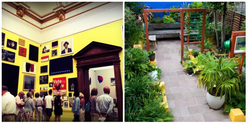 Garden design tips #4 The bright yellow walls filled the room with fun, much like the blues and yellows in our Frida Kahlo garden