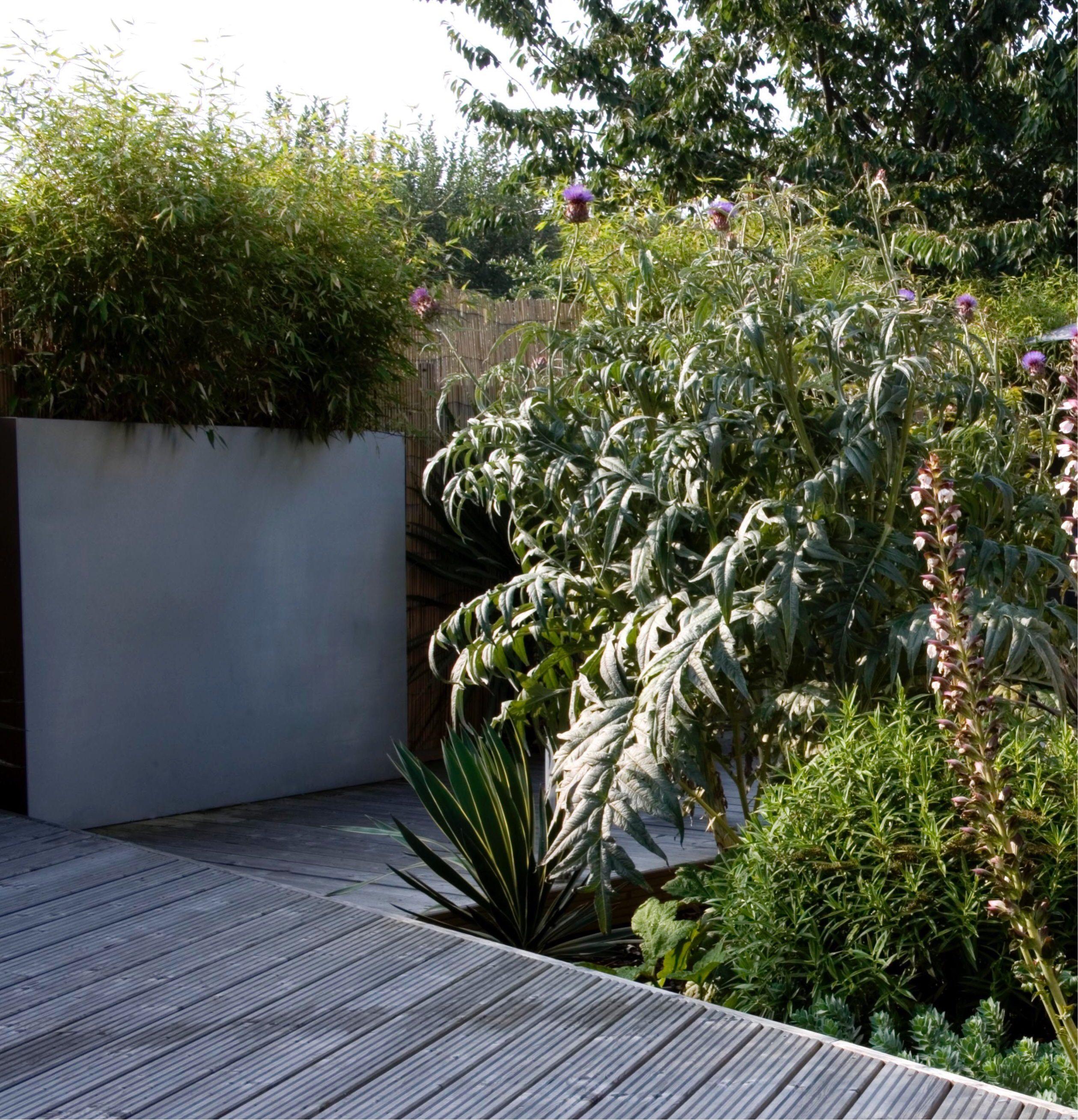 Garden layout design - planters always look good