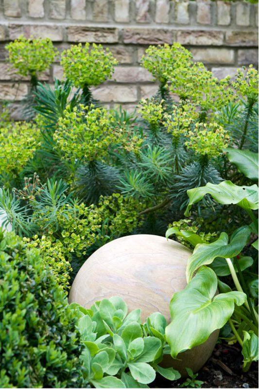 Successful garden design - focus on foliage