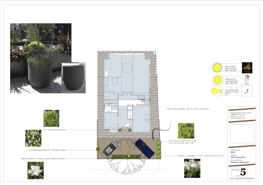 planting for contemporary garden