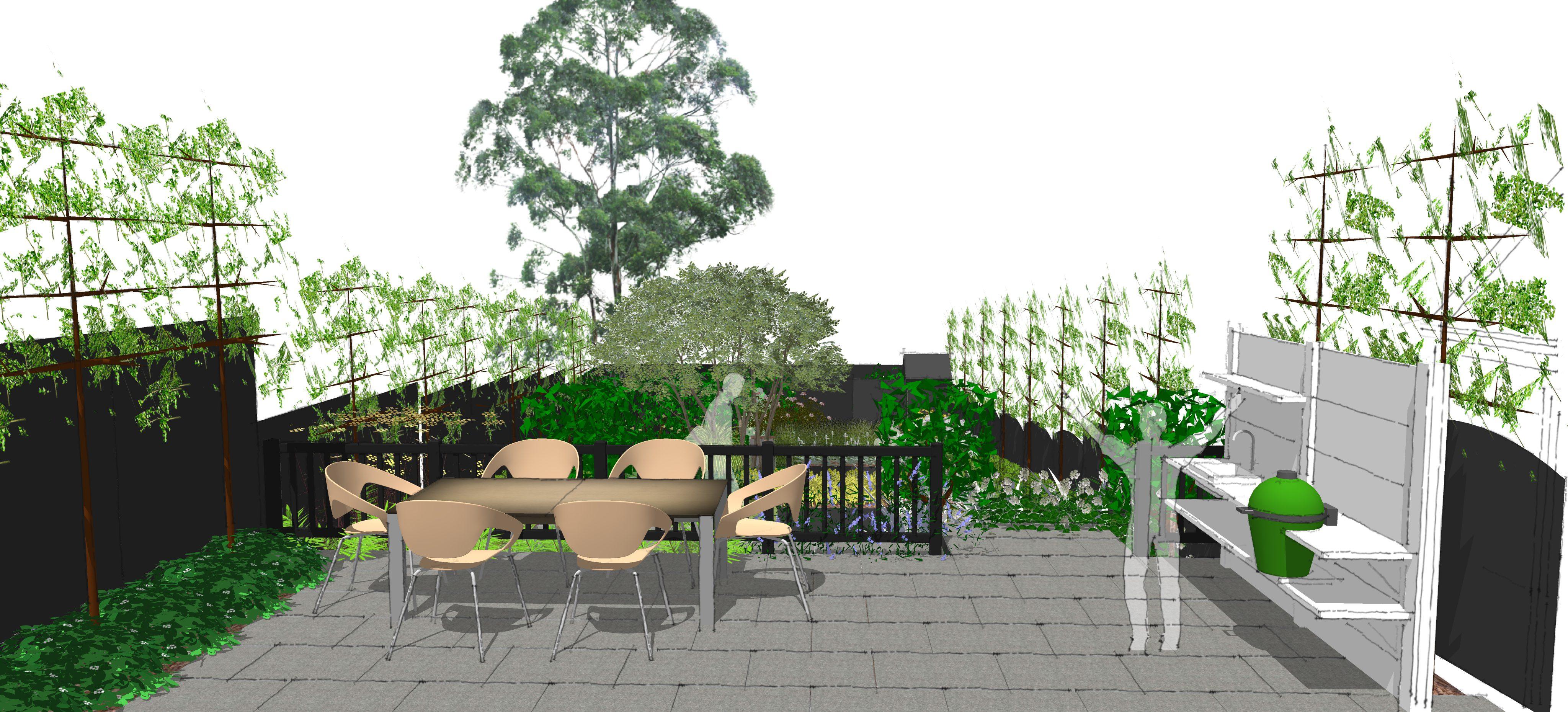view down a modern garden design