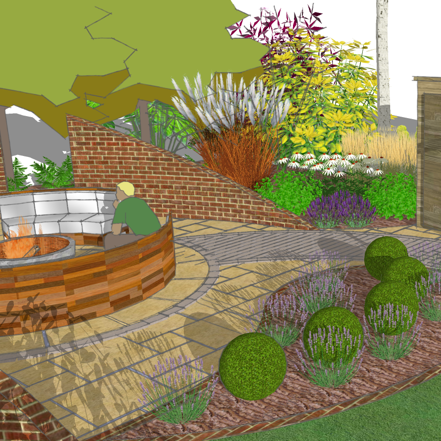concept planting for contemporary garden